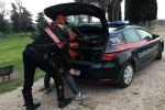 Armi e metanfetamine: clamoroso arresto alle porte della città