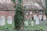 Cimitero ebraico nell'incuria