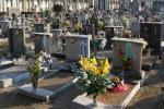 Ancora furti di piante in cimitero