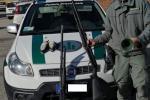 Blitz contro i bracconieri: avevano armi modificate