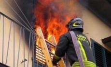 Casa in fiamme, cagnolino salva la vita al padrone e resta ferito