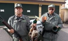 Polizia contro il bracconaggio nelle valli