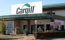 """""""Ora per Cargill si disponga la sanificazione degli ambiente e il tampone su tutti i lavoratori"""""""