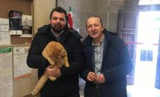 """Polesella offre """"asilo politico"""" al gatto Rossini"""