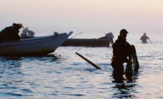 """""""Pesca: contrari al nuovo sistema di controlli imposto dal Parlamento europeo"""""""