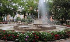 La fontana diventa rosa
