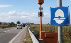 Un autovelox sulla provinciale verso Villanova del Ghebbo
