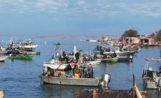Bonus 950 euro: ora i pescatori possono farne richiesta