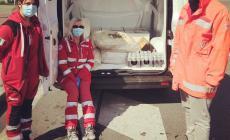 Cibo e bevande in scadenza donato da Notorius Cinema alla Croce Rossa