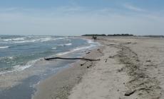 """""""Le nostre spiagge sono piene di rifiuti. Aiutaci a portarli via"""""""