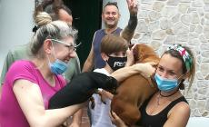 Cagnolino incastrato nel cancello, salvato dai pompieri