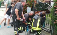 I vigili salvano il cagnolino rimasto incastrato nel cancello