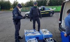 Bloccato un mezzo proveniente dalla Romania: sequestrati 145 chili di tartufo nero