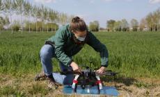 Sistemi agrivoltaici: ecco di cosa si tratta