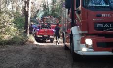 Grosso incendio nella pineta di Cao Marina