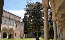 Il Museo Grandi Fiumi va in ferie, ma resta operativo