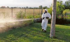 La disinfestazione contro le zanzare è iniziata