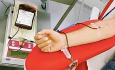 Scopre di avere la leucemia donando il sangue e viene salvata