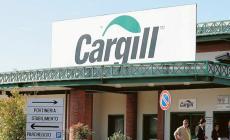 """""""La situazione alla Cargill è sotto controllo. Nessun focolaio"""""""