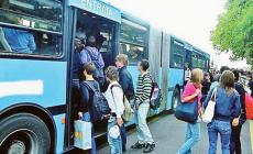 6,2 milioni per nuovi autobus al comune di Rovigo