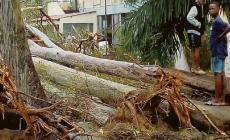"""""""E' stata dura, ma sto bene il ciclone ha distrutto tutto"""""""