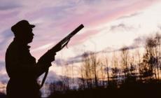 """""""A danno si aggiunge danno: i proprietari dei terreni non possono chiedere il divieto di caccia all'interno dei loro fondi"""""""