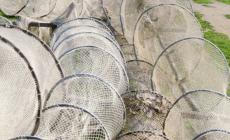 Strumenti innovativiper aumentare competitivitàe sostenibilitàdella pesca