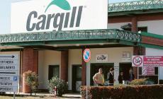 """Cargill, """"Presto i tamponi ai lavoratori"""""""