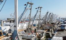 """""""Arriva il bonus di 950 euro ai pescatori"""""""