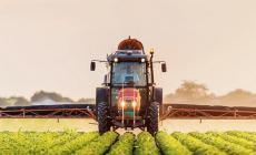 Agricoltura: 12 milioni per crescita e competitività