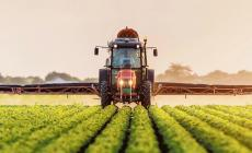 Nuovi aiuti dalla Regione per gli agricoltori colpiti dalla pandemia
