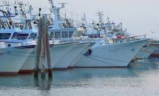 La pesca pensa alla ripartenza