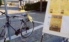 Martedì la caccia al leon in premio una bicicletta