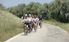 Mille km di natura e bellezza in bici