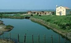 Il Delta del Po patrimonio mondiale <br/> iscritto nelle riserve della biosfera