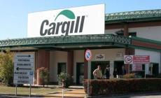 Sedici posti a rischio alla Cargill <br/> allarme tra i sindacati