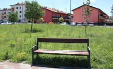 Parco di via Baruchello <br/> immersi nel verde fino al ginocchio