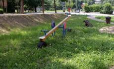 Erba alta, cespugli e graffiti <br/> giardino trascurato in viale Gramsci