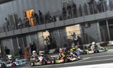 Notte magica all'autodromo <br/> con i campioni del karting