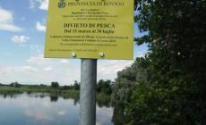 Volta Grimana <br/> garantita dai divieti