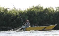 """Le lamentele dei pescatori polesani  <br/> Trombini: """"Tutelare il ripopolamento"""""""