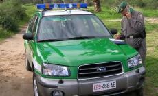 Multe ai turisti per le auto sulle dune<br/> sanzioni di 100 euro a Rosolina Mare