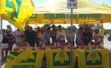 Coldiretti promuove i prodotti locali <br/> donando pesche a Rosolina Mare