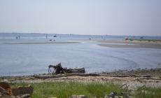 Diritti esclusivi di pesca: la petizione blocca Provincia