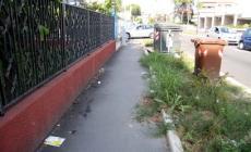 Via Fuà Fusinato già trascurata <br/> tra incuria, erba alta e cartacce
