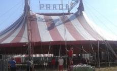 Il Circo di Praga arriva in città <br/> 12 giorni di intrattenimenti e spettacoli