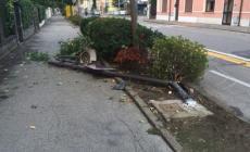 Lampione abbattuto in viale Trieste <br/> e tra i residenti riesplode la protesta