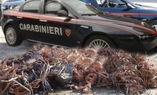 Furto di cavi di rame <br/>ladri in azione in un cantiere