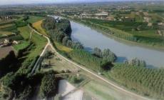Pfas, inquinamento acque <br/> è allarme in Polesine