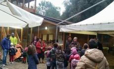 Castagnata di San Martino <br/> in pineta Fornaci